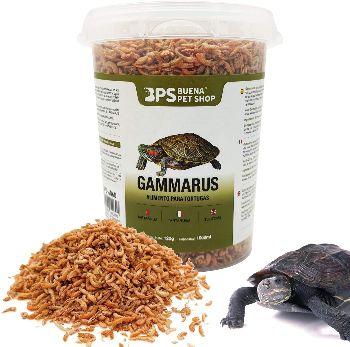 camarones para tortugas